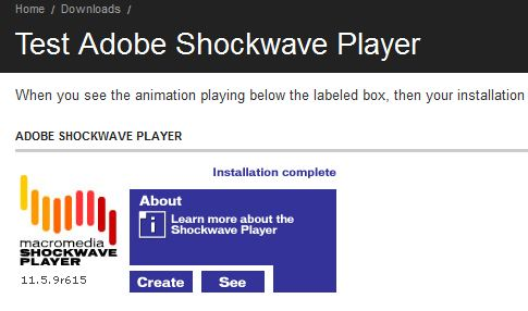 shockwave flash player test